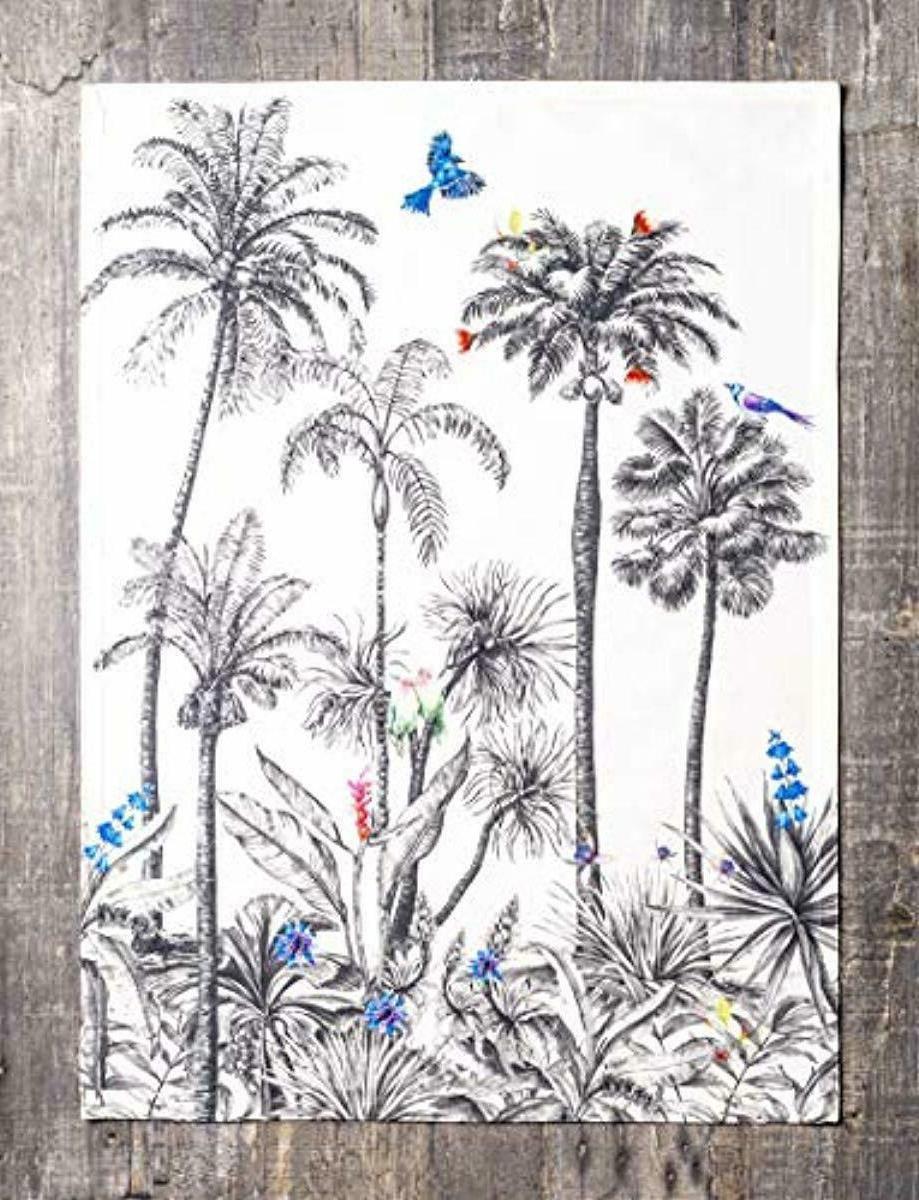 Maison d' Amazonia 100% Set of 3 Kitchen Towels 20 Inch 27.5